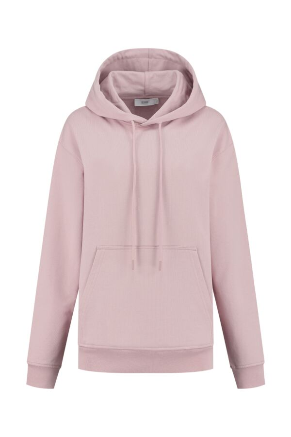 Closed Hooded Sweater Icy Verbena - C85314 47E PR 894